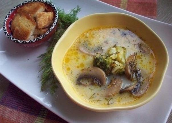 Подборка аппетитных сырных супчиков к обеду