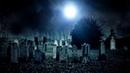 Ночной поход на кладбище за свежими душами.