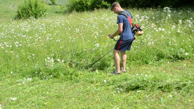 Это я в деревне помагаю крёстному касить сено