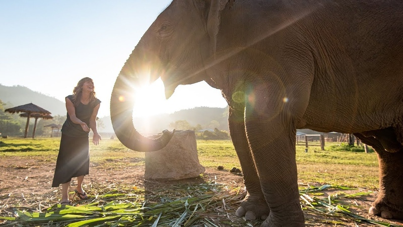 Why We Stopped Riding Elephants - Be Kind. Be Intrepid