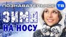 Почему говорят ЗИМА НА НОСУ Познавательное ТВ Артём Войтенков