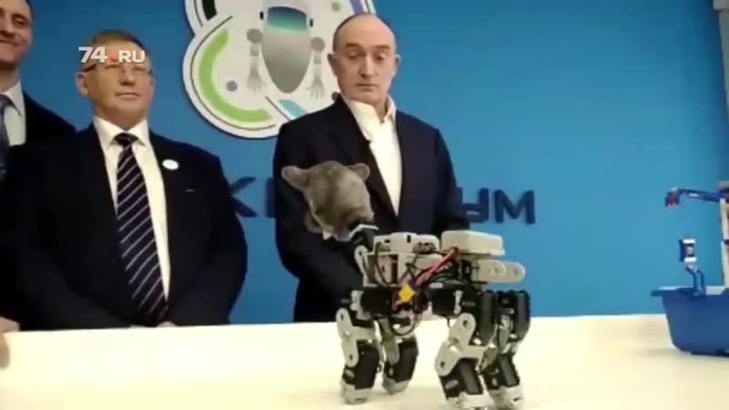 После _Робота Бориса_ в Ярославле, в Челябинске презентовали робокота. Вот он настоящий у