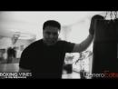 BOXING_VINES ( by kirakosyan ) (Boxing Vines) l boxingvines