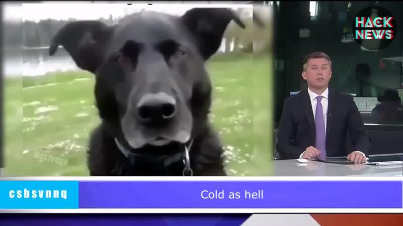 Hack News - о погоде