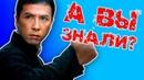 Донни Йен кто он на самом деле 10 шокирующих фактов о легенде фильма Ип Ман 1 2 3 4