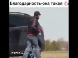 Добро возвращается сторицей - vk.comtricks_lf