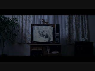 Чак Норрис против коммунизма / Chuck Norris vs. Communism (2015)