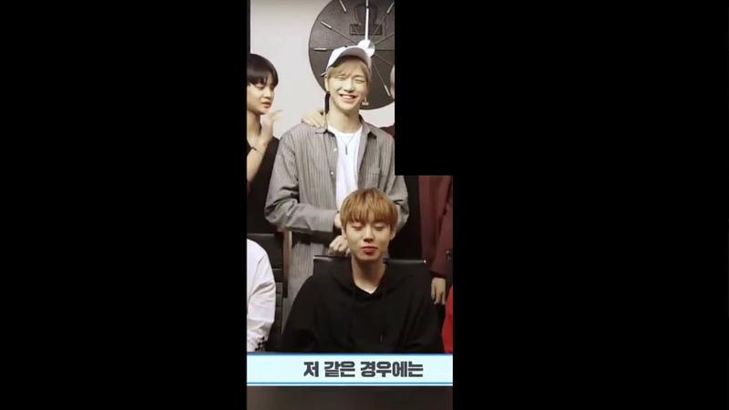 [강다니엘 박지훈워너원] 아이비클럽 워너원 인사 영상 (DanielJihoon)