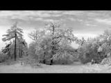 Agalloch - The Hawthorne Passage