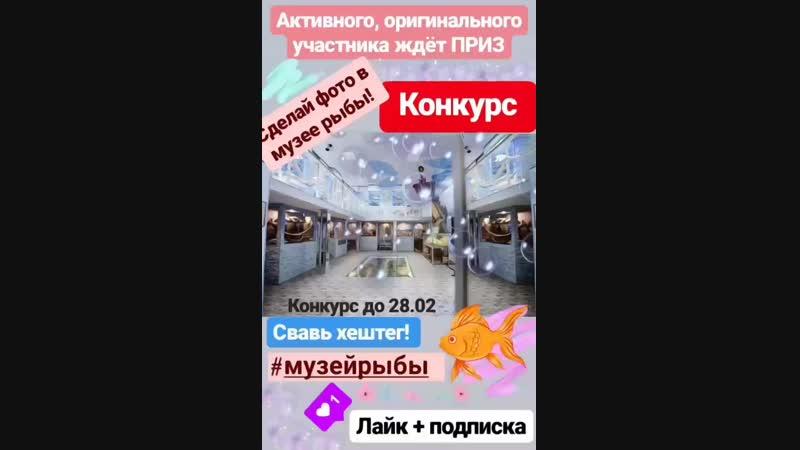 VID_165720531_165929_372.mp4