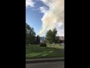 Подожгли елку Новокузнецк