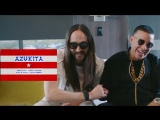 Steve Aoki, Daddy Yankee, Play-N-Skillz &amp Elvis Crespo - Azukita (Official Video)