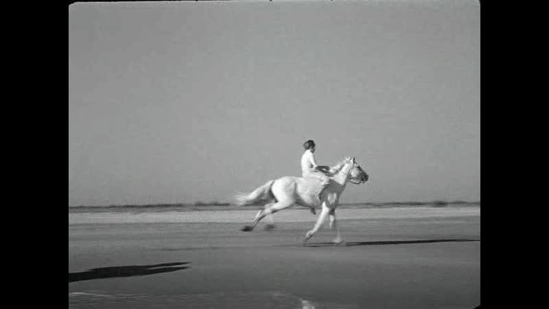 Белая грива.1953.BDRip_[700]