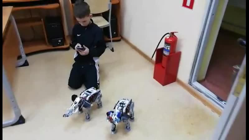 Робототехника Слон