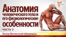 Анатомия человеческого тела и его физиологические особенности. Захар Белинский (Арирадъ). Часть 2