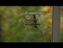 Кормушка птичья оконная на присосках Пташка от компании КОШКА на ОКОШКЕ