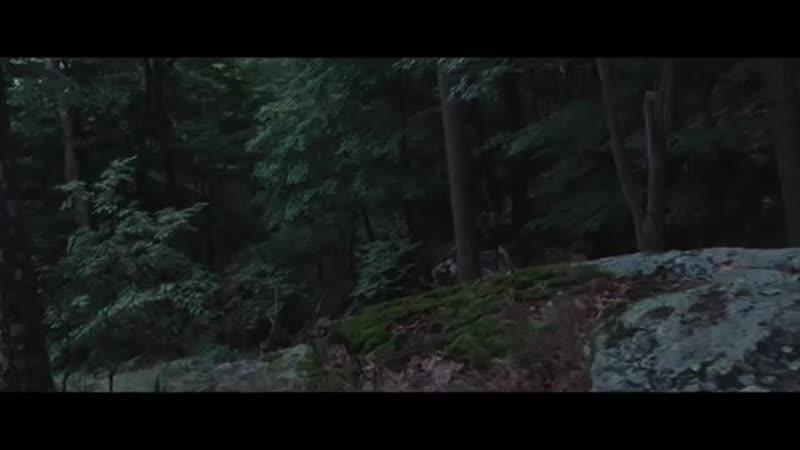 Elliot Moss - Slip (Official Video)