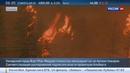 Новости на Россия 24 • Власти канадской Альберты не могут справиться с лесными пожарами