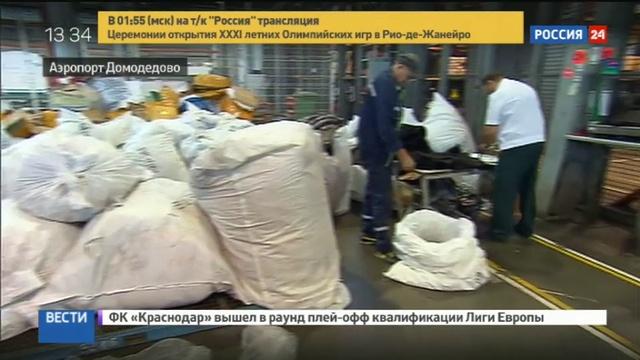 Новости на Россия 24 • Через аэропорт Домодедово пытались ввезти 3 тонны контрабандных шуб