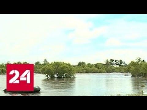 Режим ЧС в Амурской области несколько сел отрезаны наводнением Россия 24