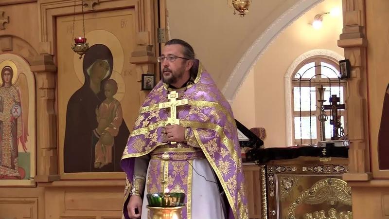 Учение о благодати Святого Духа в день памяти святителя Григория Паламы. Священник Игорь Сильченков