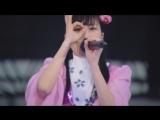 Momoiro Clover Z - Gorilla Punch (Haru no Ichidaiji 2017 DAY2)