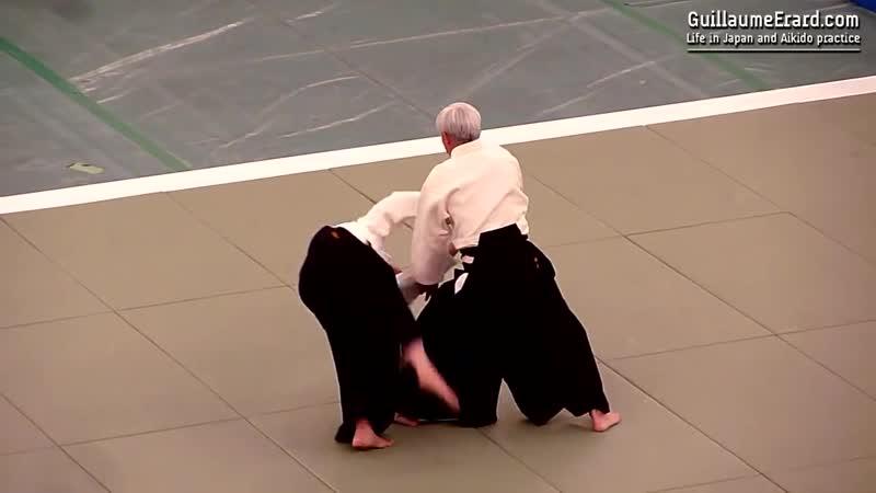 Aikido - Ueshiba Moriteru Doshu - 51st All Japan Aikido Demonstration 2013