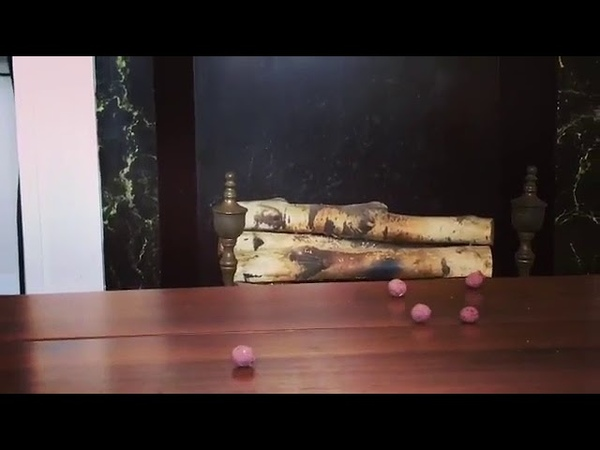 Overly Excited Rabbit Knocks Over Food - 1014503