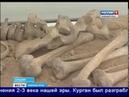 На Аркаиме обнаружили разграбленную могилу вождя