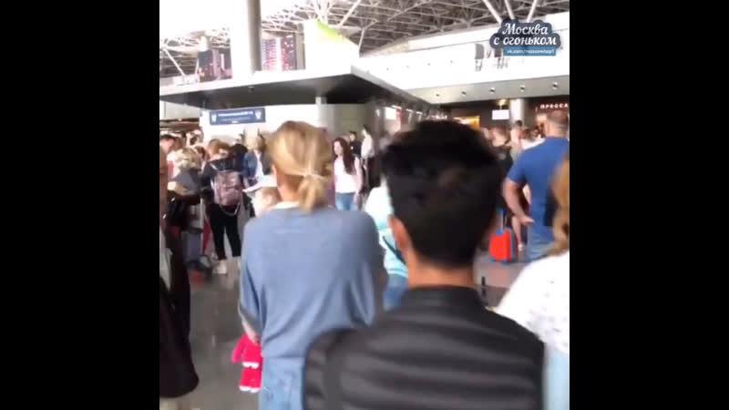 Сбой в аэропорту Внуково