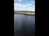 Надежда Зарицкая - Live