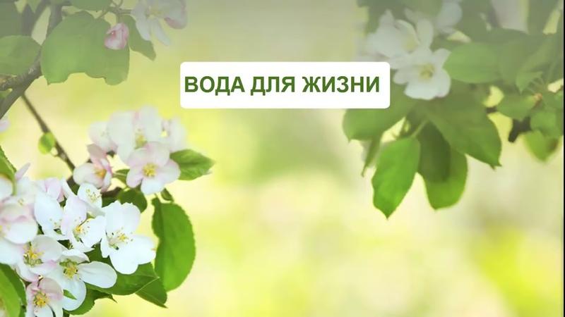 Доктор Флюра Гаптрауфовна Гильмутдинова О ВОДЕ ГИДРОПЛАЗМЕ