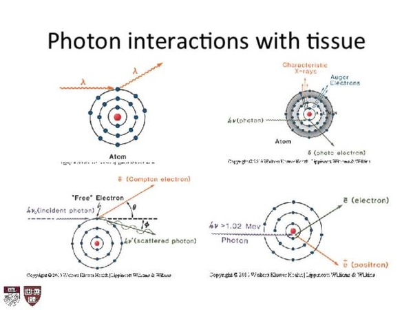Lecture 2 Introduction to Radiation Biology and Physics