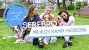 SEREBRO - Между нами любовь премьера клипа 2017