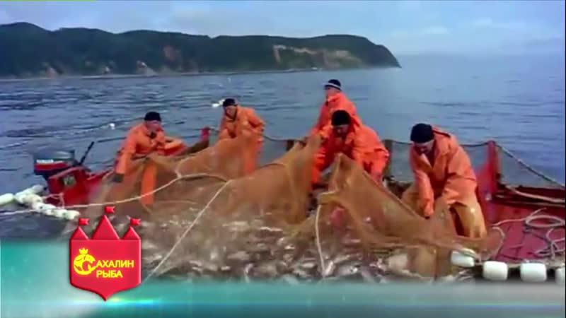 О магазине «Красная икра» компании Сахалин рыба