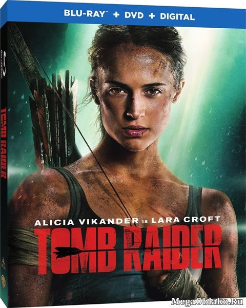 Tomb Raider: Лара Крофт / Tomb Raider (2018/BD-Remux/BDRip/HDRip)
