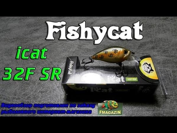 Видеообзор убийцы голавля Fishycat iCat 32F SR по заказу Fmagazin