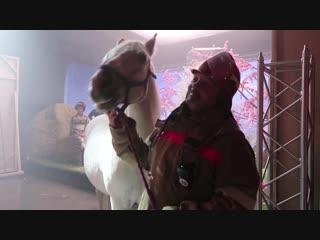 «Слава богу, ты пришел!» Любимый конь