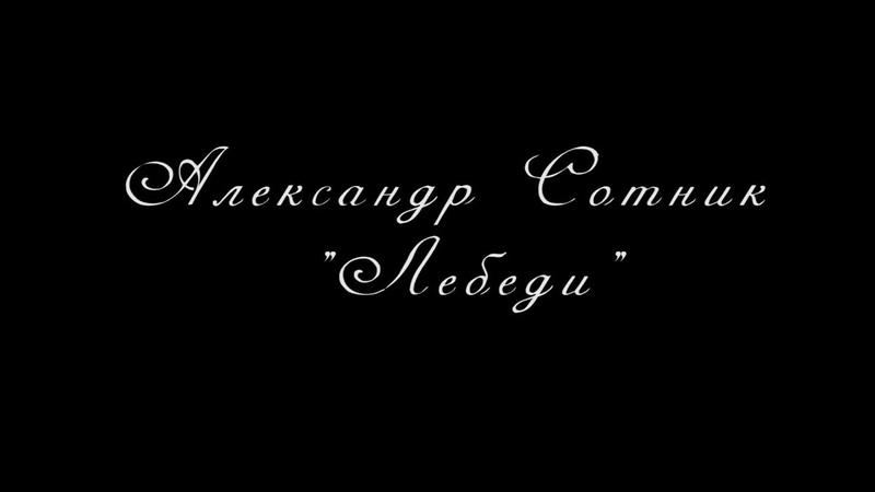 ПРЕМЬЕРА!Александр Сотник - Лебеди NEW 2019