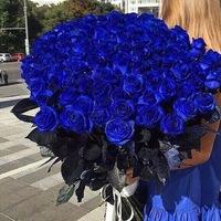 ВКонтакте Svetlana Doz фотографии