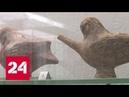 ФСБ передала крымскому музею артефакты, изъятые у черных археологов - Россия 24