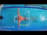 Тренировка для тех, кто плавает баттом 2.0