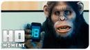 Исследование над обезьянами - Очень страшное кино 5 2013 - Момент из фильма