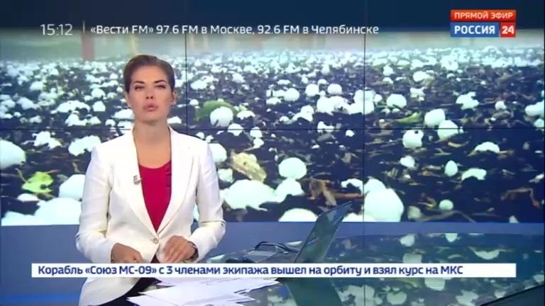 Новости на Россия 24 • В Петербурге прошел ливень с градом