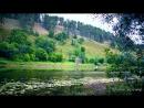 Утро звуки природы река старое русло пение птиц