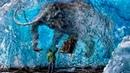 Доисторические животные жившие на территории России
