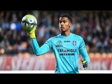 ALBAN LAFONT FC TOULOUSE 2017-2018 Incredible saves