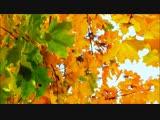 Скоро Осень Господа...Павел Соколов