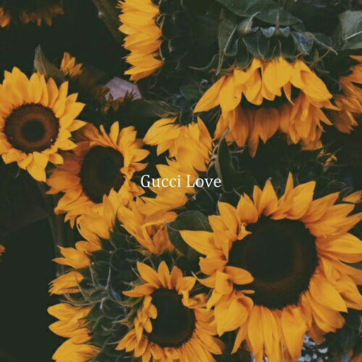 Donny альбом Gucci Love