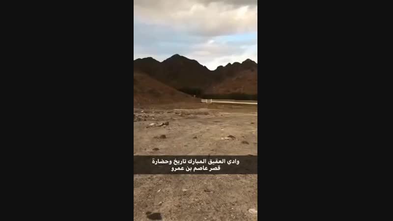 قصر عاصم بن عمرو بن عمر بن عثمان بن عفَّان بوادي العقيق بالمدينة المنورة